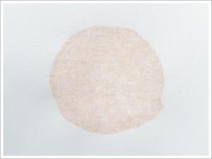 Bleach and Oxidizer Reactivity